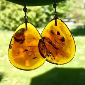 Cherry Amber Earrings, Rowena Watson Designs