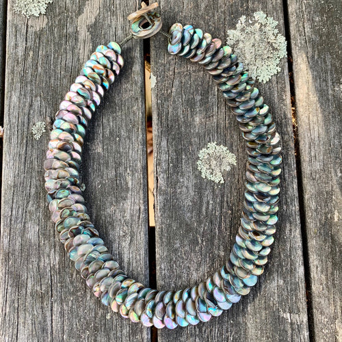 Small Paua Shell Disc Necklace