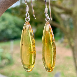 Thin Baltic Amber Earrings, Rowena Watson Designs