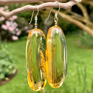 Large Baltic Amber Earrings, Rowena Watson Design