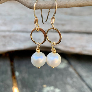 Little Freshwater Pearl and Yellow Gold Fill Earrings, Rowena Watson Designs