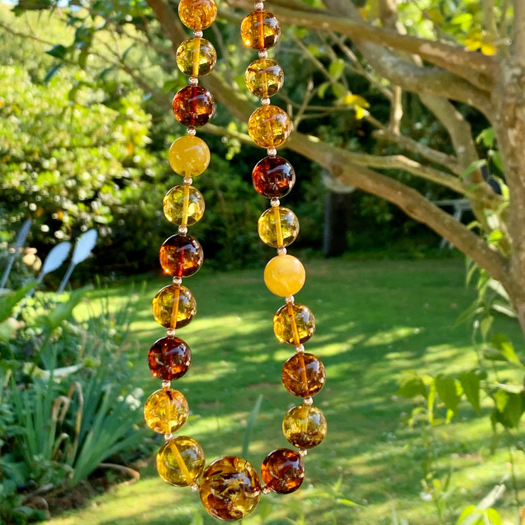 Graduated Lithuanian Baltic Amber Necklace, Rowena Watson Designs
