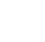 SONflower Gal Compassion Fashion™