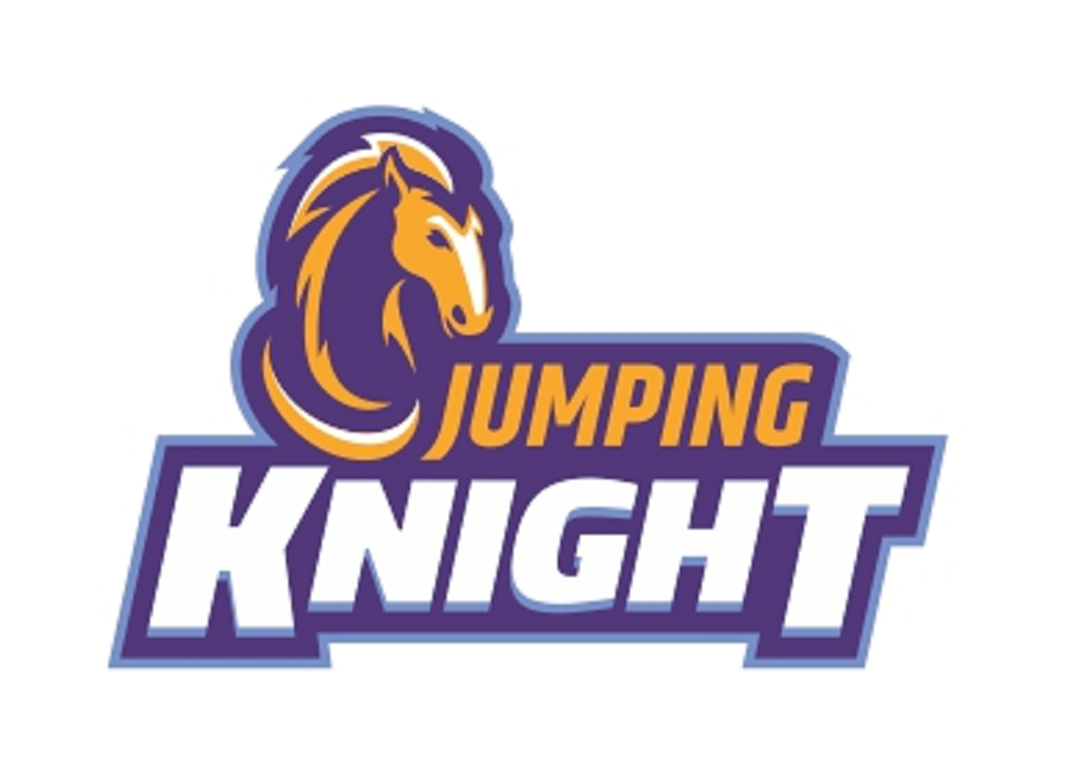 Jumping Knight. Chess store and Chess School from Edmonton, Canada