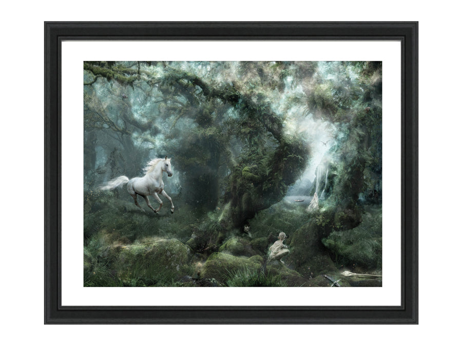 Not All Who Wander Are Lost (Lord Of the Rings) - Large Limited Edition