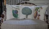 Botanical Pillow Covers ~ artichoke, plum, fig
