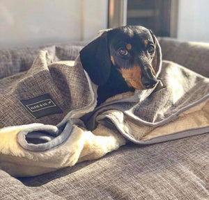 Dog Blanket - Grey/Cream
