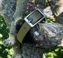 Load image into Gallery viewer, Biothane Waterproof Collar - Olive Green