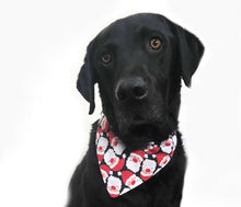 Load image into Gallery viewer, Santa Claus Christmas Bandana