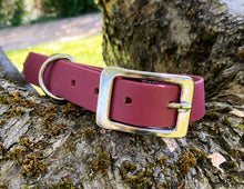 Load image into Gallery viewer, Biothane Waterproof Collar - Wine Red