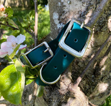Load image into Gallery viewer, Biothane Waterproof Collar - Forest Green
