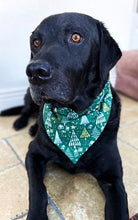 Load image into Gallery viewer, Glittery Christmas Bandana - Green