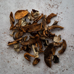 Plantin dried Mixed Mushrooms - FINE & WILD UK
