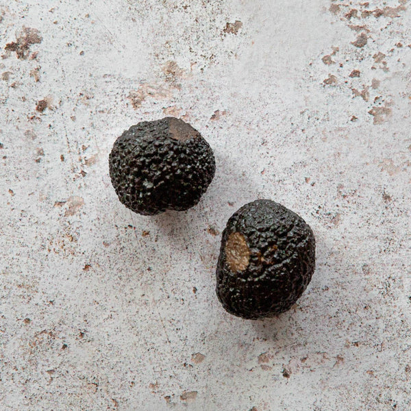 plantin preserved black truffles | FINE & WILD UK