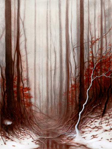 RED FOREST 13x19