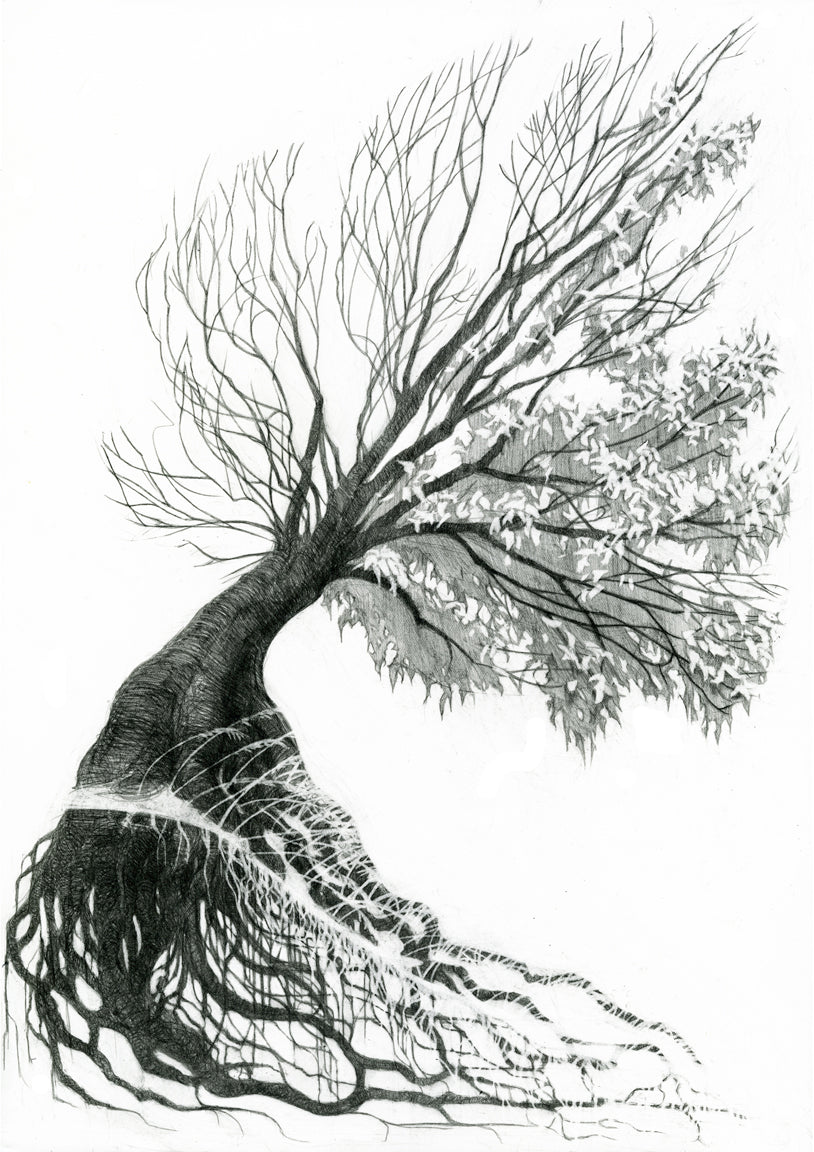 TREE OF LIFE - ORIGINAL PENCIL DRAWING