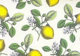 Lemon Paper Placemats by Hester & Cook - Party, Girl!