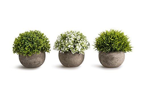 Home Accent OPPS Artificial Plastic Mini Plants Unique Fake Fresh Green Grass Flower In Gray Pot For Home Décor - Set of 3 -