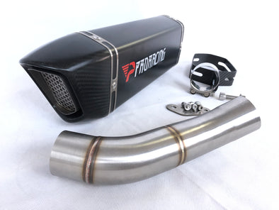 Ducati Monster 797 2017 2018 ProRacing® Link Pipe Silencer Titanium