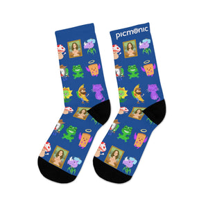 Picmonic Character Socks in Blueberry