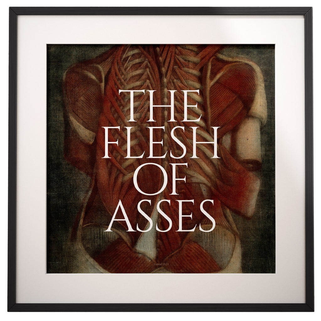 The Flesh of Asses