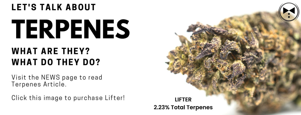 Let's Talk About TERPENES