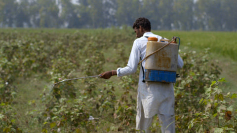 Still from 'The True Cost' (2015) of a cotton farmer spraying pesticides