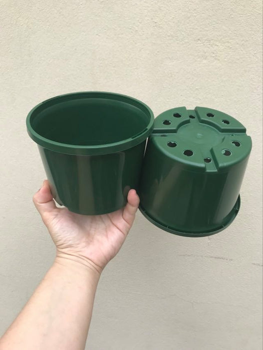 Green 140ml Squat Pots 3 for $2