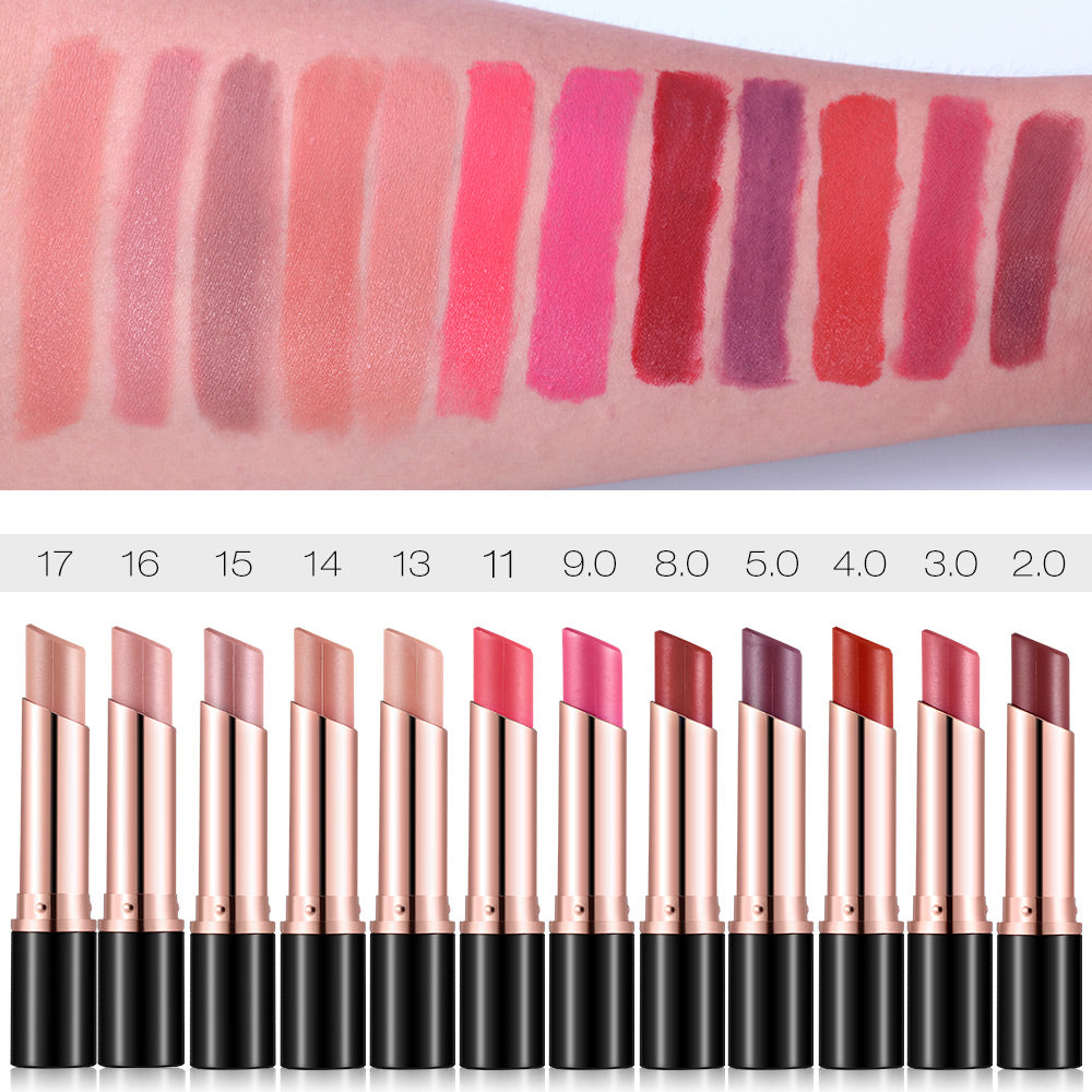 Private Label 12 Colors Waterproof Lipstick Kiss Proof Kissproof Lip Matte Cream Rouge Cosmetics Make Up