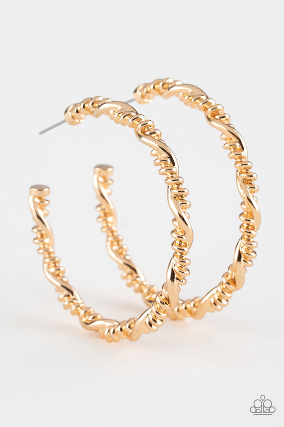 Street Mod Gold Hoop Earring - Paparazzi Accessories - jazzy-jewels-gems