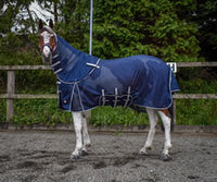 Whitaker Philip Blue fly rug