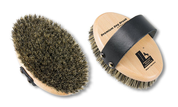 Leister Dog Brush - Pig Bristle