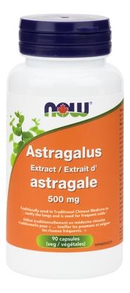 Now AstragalusExtract  500 mg - 90 caps