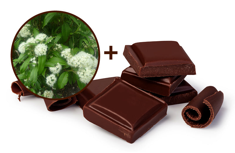 Lemon Myrtle Infused Dark Chocolate