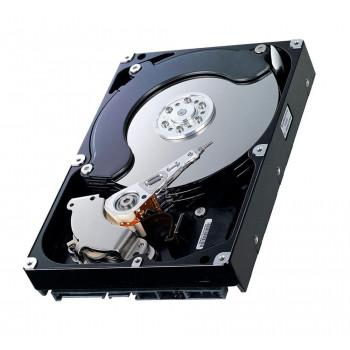 9Z1004-033 | Seagate 300GB 15000RPM Fibre Channel 4Gb/s 16MB Cache 3.5-inch Hard Drive