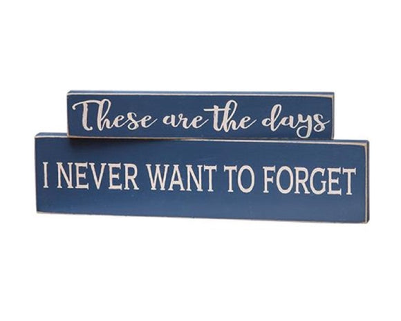 Tiered tray sign, These are the days, I never want to forget, Blue, Navy blue signs, Coastal farmhouse decor, Sentimental decor, JaBella Designs, Home decor