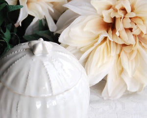Small coastal chic round ceramic jar with lid