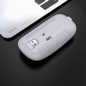 Wireless Mouse Rechargeable Silent Mouse 2.4GHz USB Optical Ergonomic LED Backlight for PC Laptop