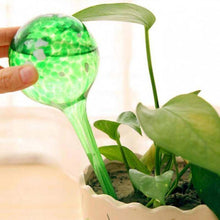 Load image into Gallery viewer, Glass Bulb Watering Decorative Garden Houseplant