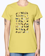 Load image into Gallery viewer, Gildan Ladies Missy T-Shirt Cats Women's