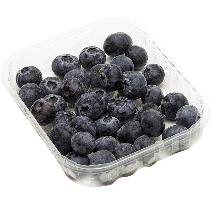 Organic Blueberry Punnet