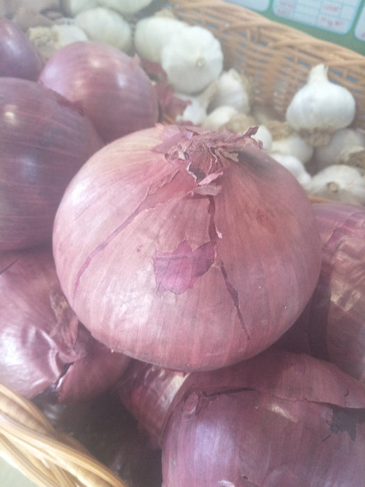 Org Brown and Red onions $4.70 kg