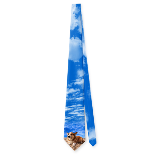 Neck Tie Dog On Sand with Blue Sky Pet Tie