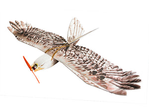 RC Plane Free Shipping EPP Airplane Model Mini Eagle RC Wingspan 1200mm Eagle EPP