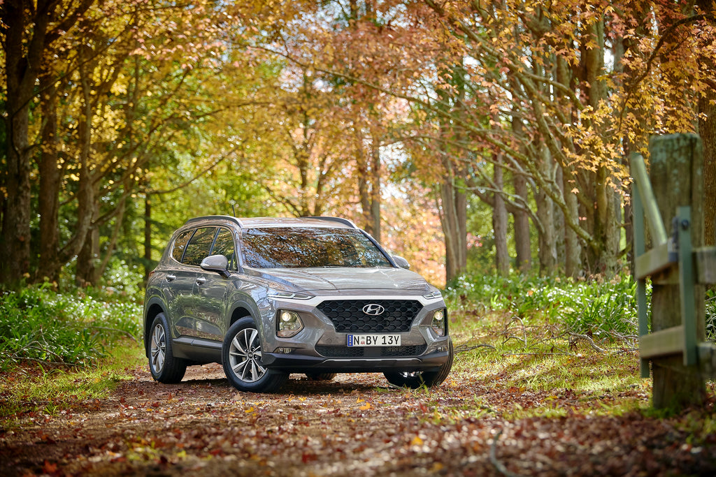 Introducing the 2020 Santa Fe Active X