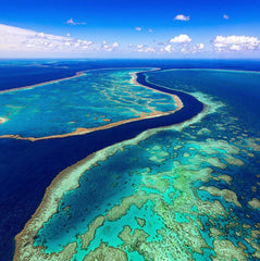 Great Barrier Reef Guides - Corsair Vehicle Solutions