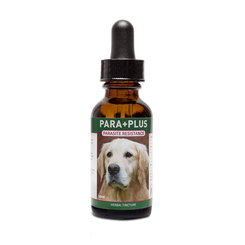 Riva's Remedy-Para+Plus,Dog/Cat, 30 ml