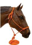 Hi Brow Rope Halter with Lead