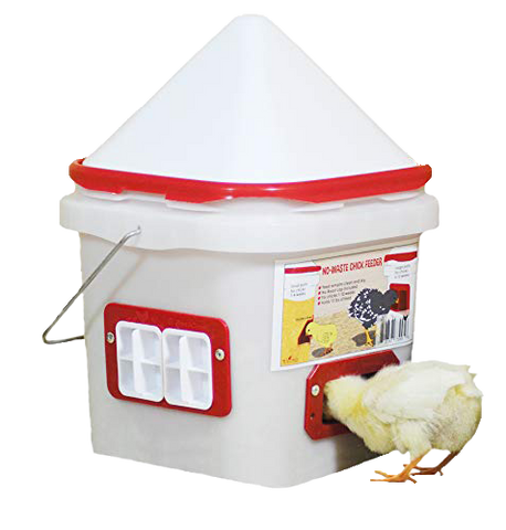 Chick Port Feeder