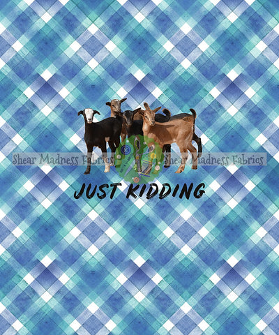 Just Kidding * Panel